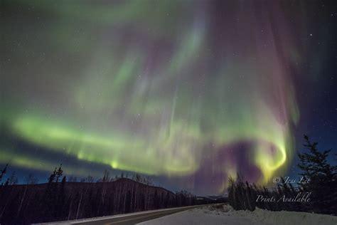 northern lights and alaska winter workshop