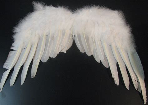 on angel wings fairy and angel wings
