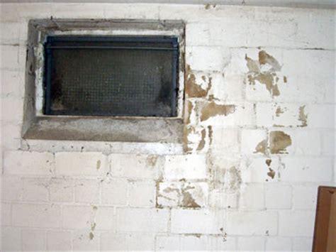 Keller Feuchtigkeit Messen by Schimmel Im Keller Sachverst 228 Ndige Zeigt Wo Es Schimmelt