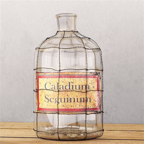Restoration Hardware Pharmacy Frosted Glass 3d Max 19th C Caged Apothecary Bottle Collection 3d Model Max Obj