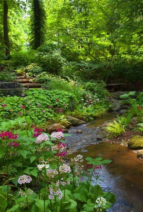 woodlands backyard 25 best ideas about backyard stream on pinterest garden