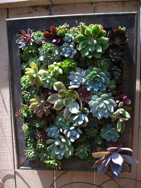 rustic hanging vertical planter with succulent arrangement