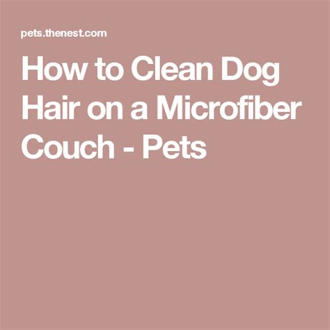 clean dog hair   microfiber couch pets