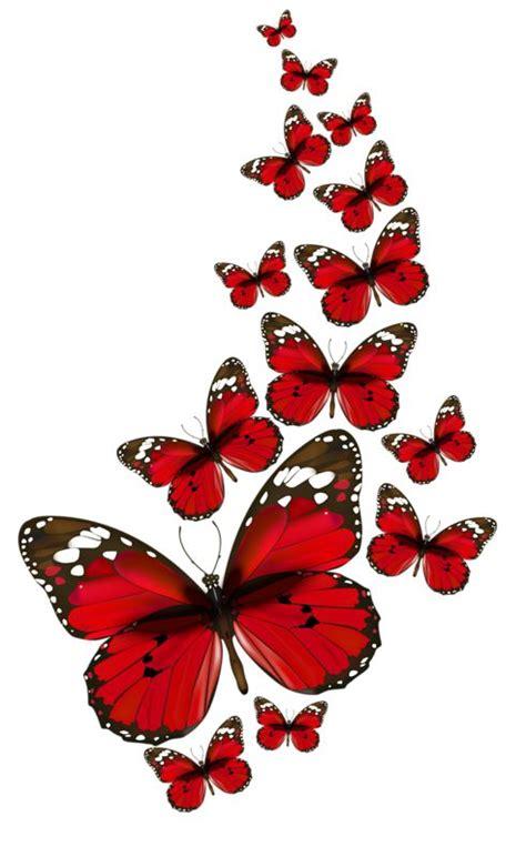 imagenes mariposas rojas mariposas rojas png buscar con google mariposas