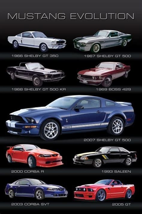 evolution mustang mustang evolution poster europosters
