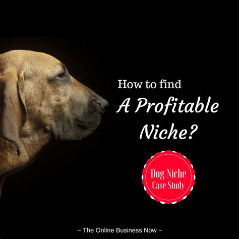 how to find niche business ideas your niche finder plan of how to find a profitable niche market the business now