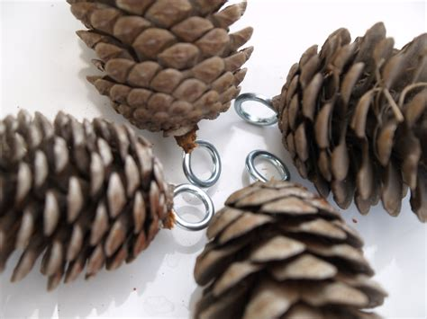 let s make wax dipped pine cone ornaments the magic onions