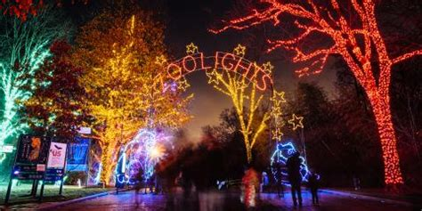 2018 christmas light displays in chicagland zoolights smithsonian s national zoo