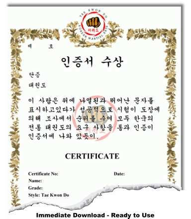 free martial arts certificate templates korean martial arts certificate templates
