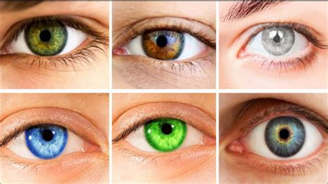 what does eye color the meaning the color of your and what does