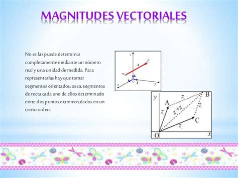 Imagenes Magnitudes Vectoriales | magnitudes escalares y vectoriales