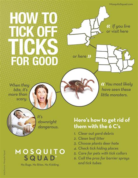 home remedies for ticks in yard 28 images jalape 241 o