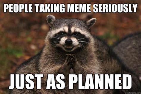 Evil Raccoon Meme - people taking meme seriously just as planned evil