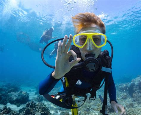 scuba diving barbados blue 5 dive resort snorkel tours jetskis