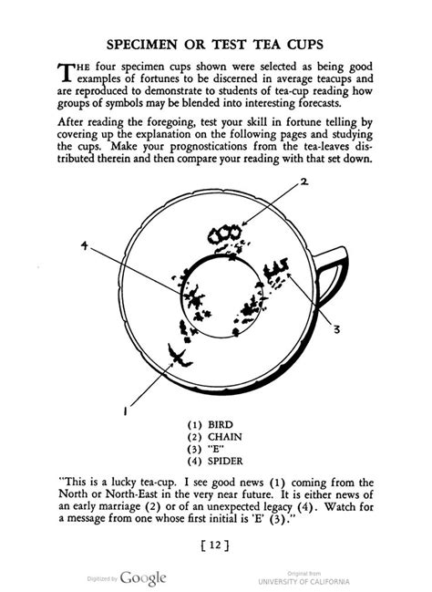 Test tea cups showing examples of how to read tea leaves