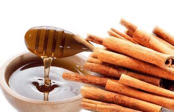 Kombinasi Teh Herbal Untuk Obesitas madu dan kayu manis untuk menurunkan berat badan