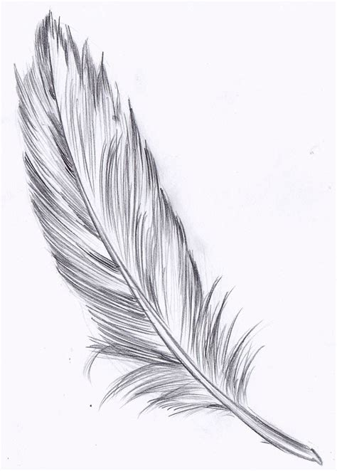 tattoo feather drawing feather drawing hľadať googlom tattoos pinterest