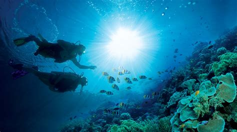 scuba diving caribbean diving holidays plan an all inclusive scuba