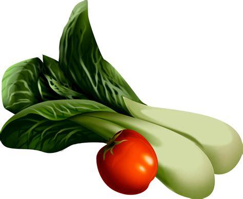 l vegetables خضروات l 233 gumes vegetables المدر س