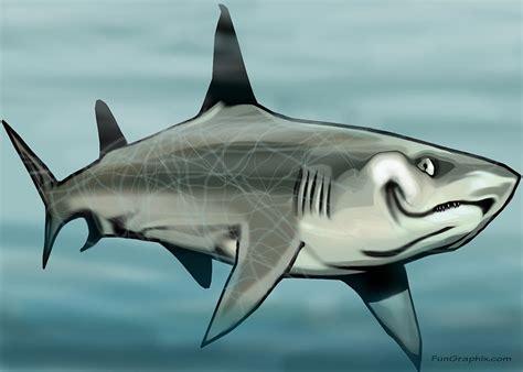 Shark Duvet Cover Shark Painting By Kevin Middleton