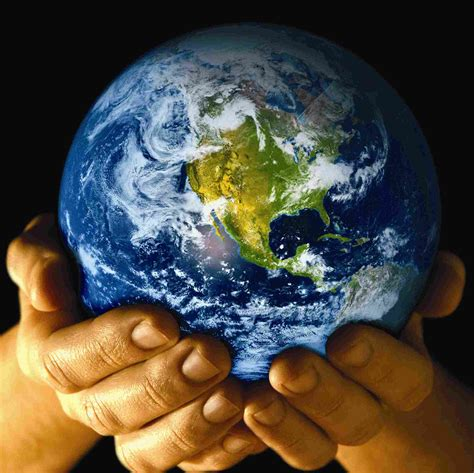 Mba In Environmental Science by Environmental Science Schools Degrees