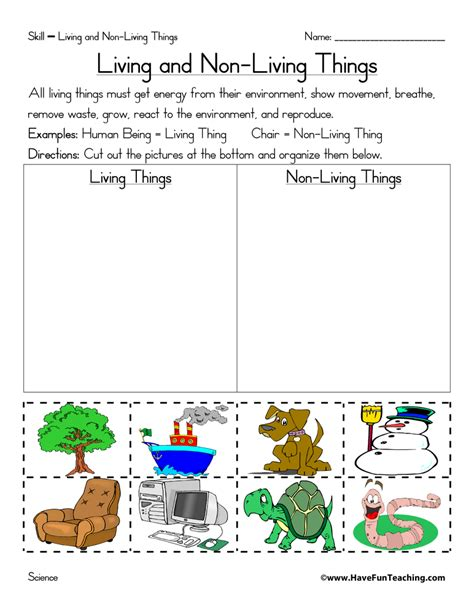 Living And Nonliving Things Worksheets Pdf by Non Living Things Worksheets Teaching