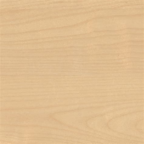seamless light wood texture texture light wood texture birch and woods