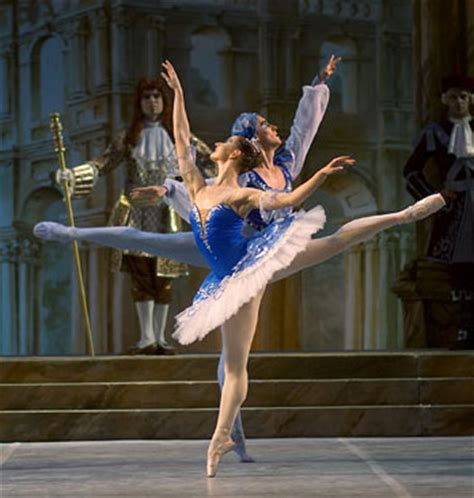mikhailovsky classical ballet and opera theatre