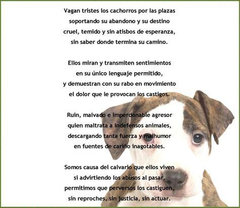 poema de los animales maltrato animal animales frases en espa 241 ol pinterest