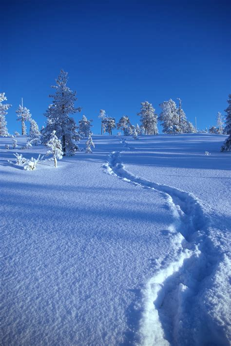 picture of snow file upwards snow path jpg