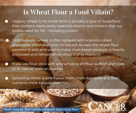whole grains pros and cons wheat flour a silent killer in your food