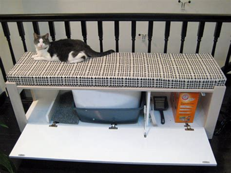 cat bench 10 hacks to hide your cat s litter box petcha