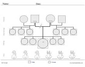 family history genogram template genogram worksheet cockpito