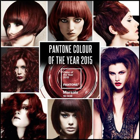 hair colourest of the year 2015 marsala a cor do momento nos cabelos immagine