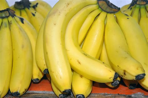 imagenes gratis de frutas y verduras banco de im 193 genes fotos gratis de frutas verduras