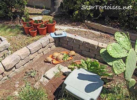 Outdoor Heat Ls For Tortoise by Golden Tortoises Captive Care