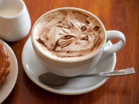 artistic coffee 15 beautiful and inspiring latte art gifs to perk up your