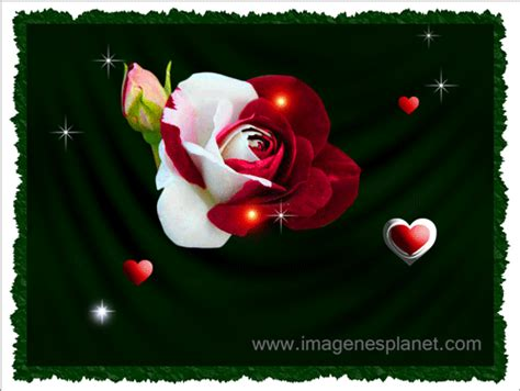 imagenes de amor en gif imagenes de amor en gif miexsistir