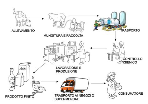 merceologia alimentare mappe merceologia alimentare libro di scuola