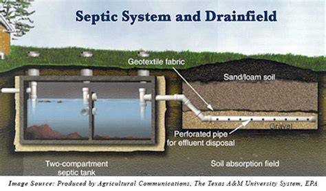 buying a house with a septic system what is the difference between a septic system and a sewer
