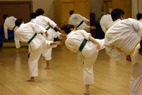 video tutorial karate 6 most popular martial arts how to choose the best for you