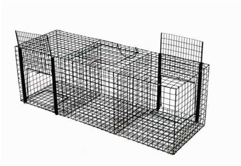 gabbie trappola per uccelli strumenti di gestione e cattura trappola per gazze e corvidi