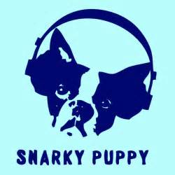 Snarky Puppy 3bands