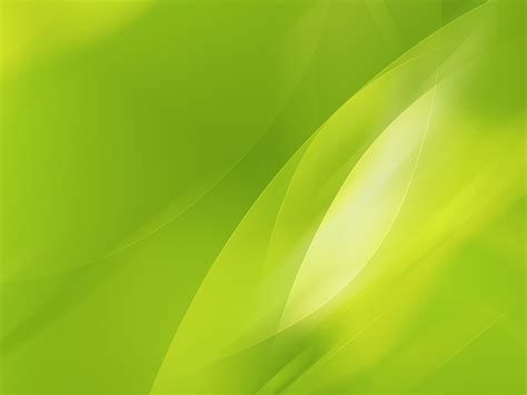 lime green wall lime green wallpaper