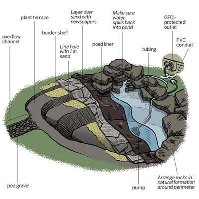 how to create a backyard pond landscaping lawn advice