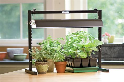 Fluorescent Lighting: Best Fluorescent Light for Plants Indoor Grow Lights Indoor Gardening