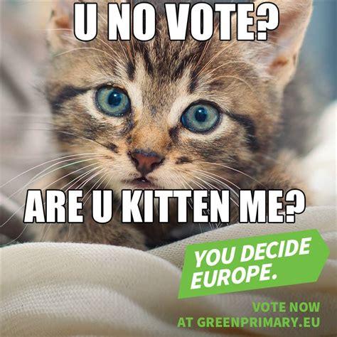 Katzen Meme - europas gr 252 ne quotieren katzen memes wahl de