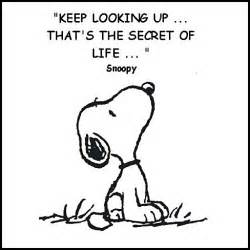 The tao of snoopy just for laughs urban simplicty