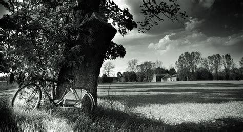 Black And White Landscape Photography Quotes تحميل افضل خلفيات Hd بالابيض والاسود 2014