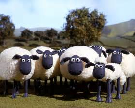 shaun the sheep pictures shaun the sheep showfilmfirst